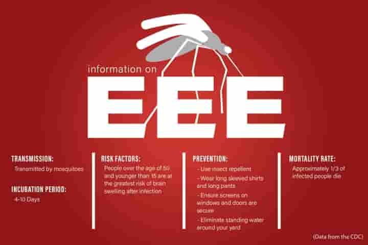 Internship in Chennai for EEE